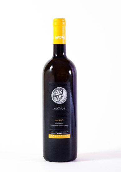 Micah bianco azienda vinicola malaspina